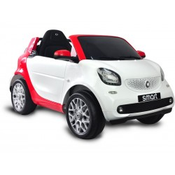 Akumulator pojazdu Smart 6v. Radio Control | Basenyweb